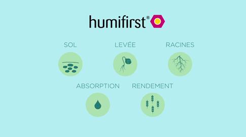Humifirst® produceer meer met dezelfde hoeveelheid meststof